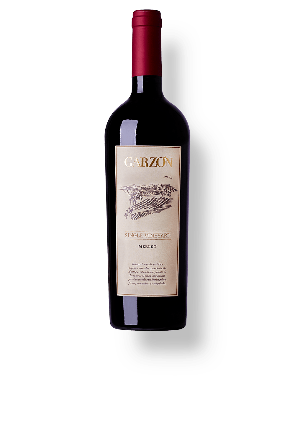 Garzon-Single-Vineyard-Merlot