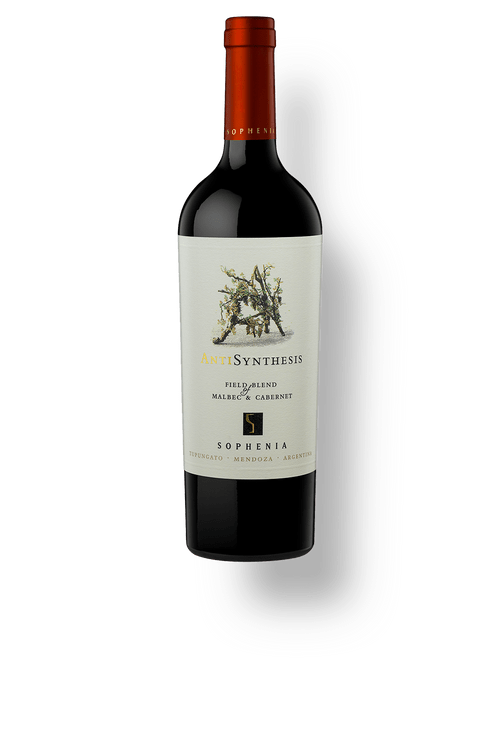 Synthesis-Anti-Malbec-cabernet