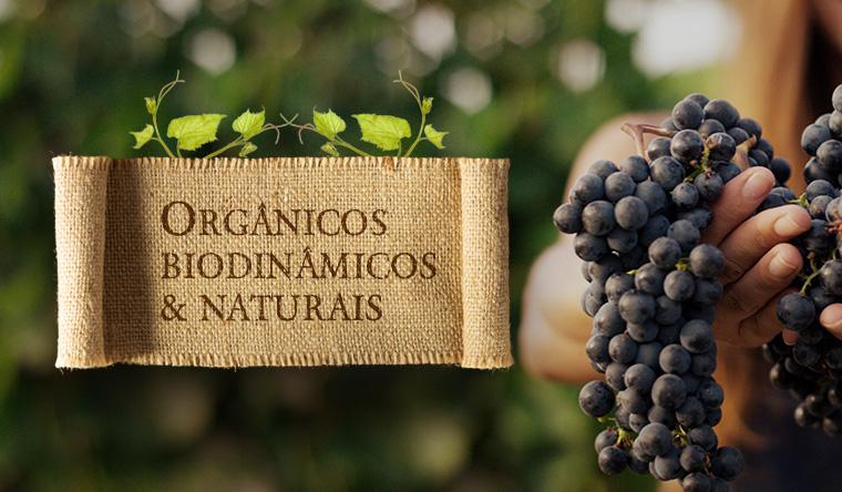 Orgânicos, Biodinâmicos e Naturais