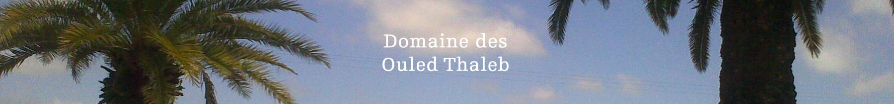 Domaine des Ouled Thaleb
