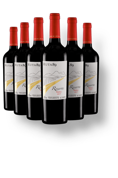 Vinho_Tinto_Wine_Offer_6_Ruta_89_Reserve_Malbec