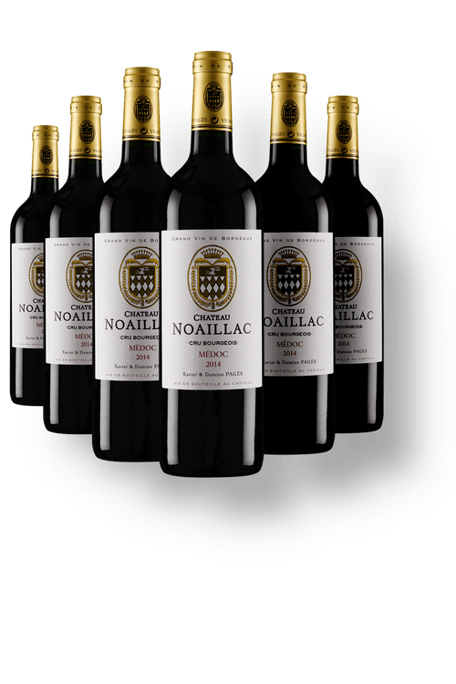 Vinho_Tinto_Chateau_Noaillac_Wine_Offer_Kit_6