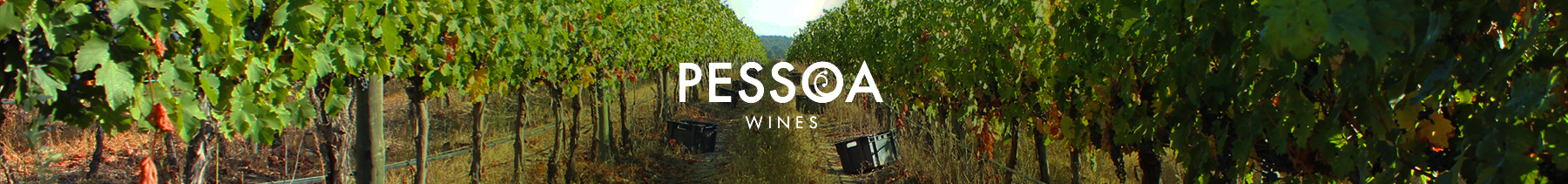 Pessoa Wines
