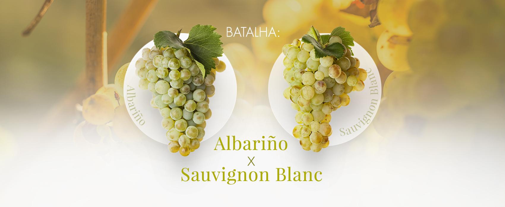 Batalha - Albariño x Sauvignon Blanc