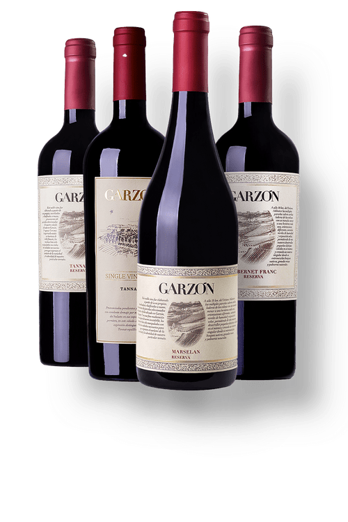 Kit-1-Garzon-Single-Vineyard-Tannat---3-Garzon-Reserva--1-Cabernet-Franc---1-Marselan---1-Tannat-