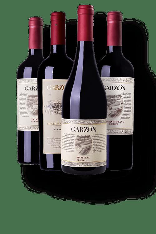 Kit-1-Garzon-Single-Vineyard-Tannat---3-Garzon-Reserva--1-Cabernet-Franc---1-Marselan---1-Tannat-