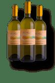 Chardonnay_LAFUGAdoc
