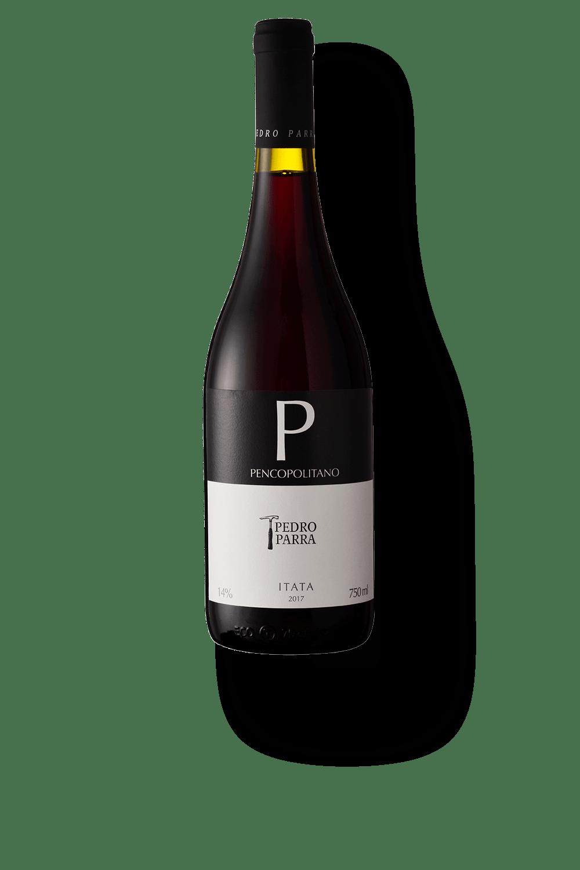 025301---Pedro-Parra-y-Familia-Pencopolitano-2018-copy