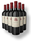 catalpa_cabernet_sauvignon